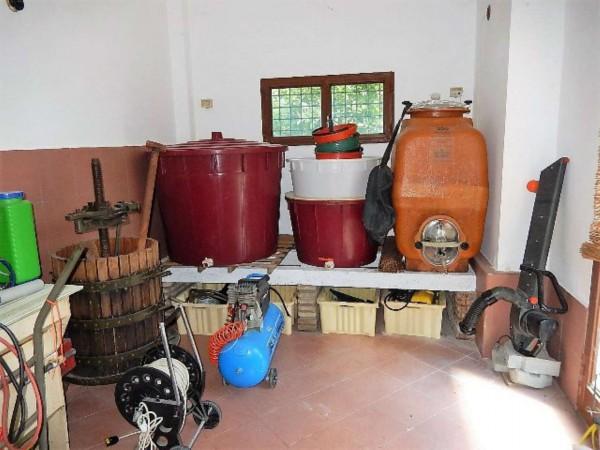 Casa indipendente in vendita a Castrocaro Terme e Terra del Sole, Tra Castrocaro E Dovadola, 520 mq - Foto 6