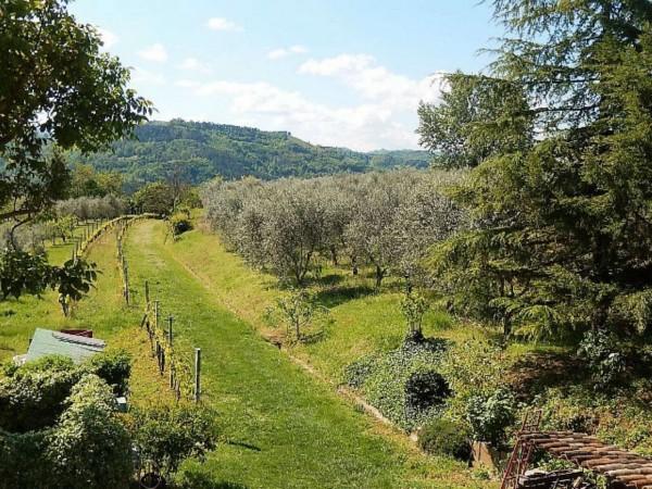 Casa indipendente in vendita a Castrocaro Terme e Terra del Sole, Tra Castrocaro E Dovadola, 520 mq - Foto 29