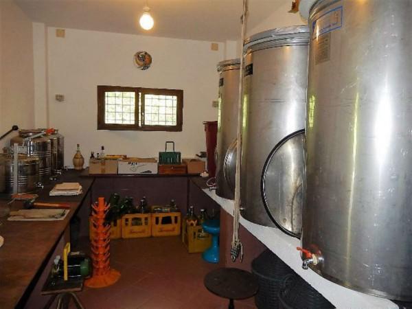 Casa indipendente in vendita a Castrocaro Terme e Terra del Sole, Tra Castrocaro E Dovadola, 520 mq - Foto 7