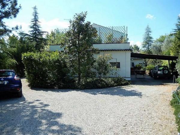 Casa indipendente in vendita a Castrocaro Terme e Terra del Sole, Tra Castrocaro E Dovadola, 520 mq - Foto 4
