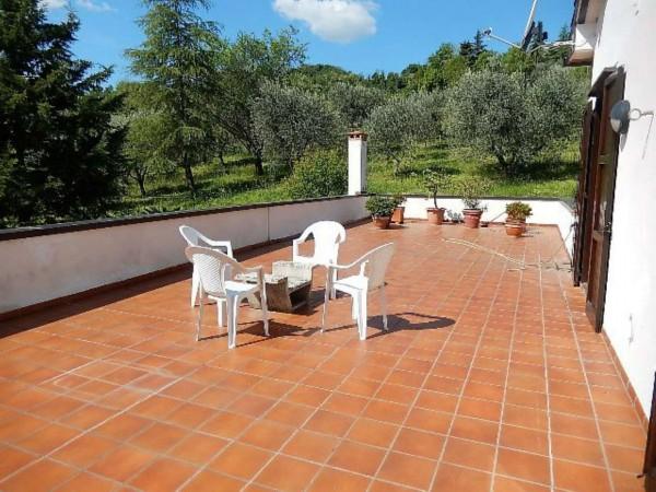 Casa indipendente in vendita a Castrocaro Terme e Terra del Sole, Tra Castrocaro E Dovadola, 520 mq - Foto 30
