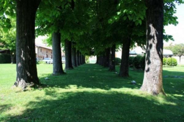 Rustico/Casale in vendita a Orbassano, Centro, Arredato, con giardino, 1000 mq - Foto 15