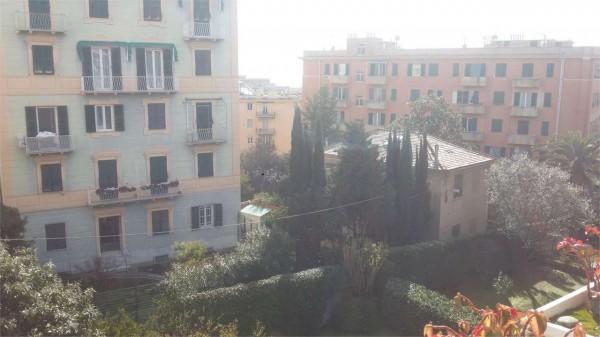 Locale Commerciale  in vendita a Genova, Sturla, Con giardino, 100 mq - Foto 13