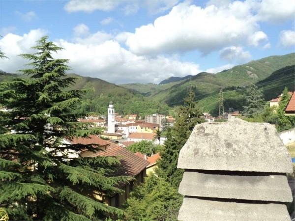 Locale Commerciale  in vendita a Ronco Scrivia, Arredato, con giardino, 300 mq - Foto 1