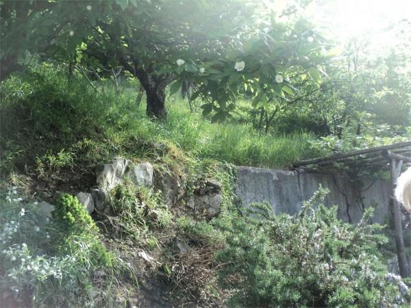 Locale Commerciale  in vendita a Ronco Scrivia, Arredato, con giardino, 300 mq - Foto 15