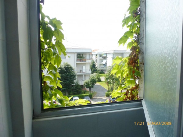 Appartamento in vendita a Torino, Arredato, con giardino, 38 mq - Foto 2