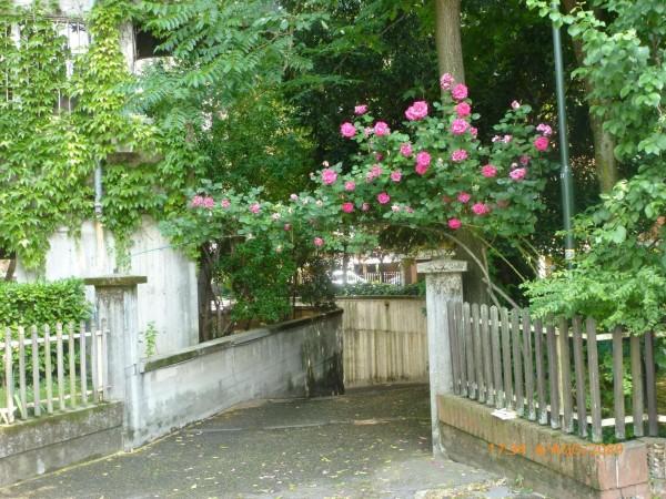 Appartamento in vendita a Torino, Arredato, con giardino, 38 mq - Foto 4