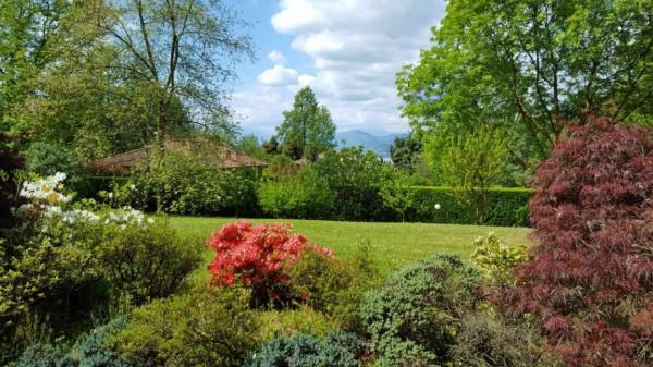 Villa in vendita a Galliate Lombardo, Residenziale, Arredato, con giardino, 717 mq - Foto 5