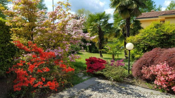 Villa in vendita a Galliate Lombardo, Residenziale, Arredato, con giardino, 717 mq - Foto 13