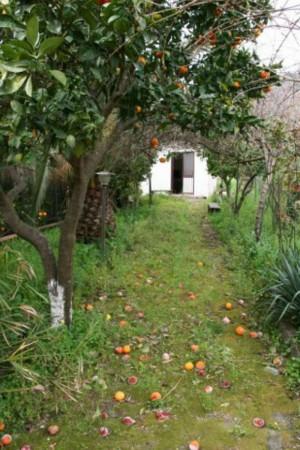 Villa in vendita a Santi Cosma e Damiano, Scauri, Con giardino, 166 mq - Foto 18