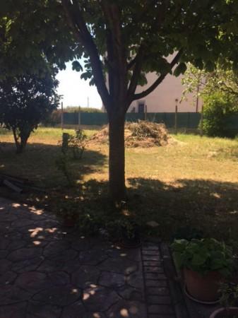 Villa in affitto a Deruta, San Nicolò Di Celle, Arredato, con giardino, 180 mq - Foto 6