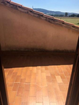 Villa in affitto a Deruta, San Nicolò Di Celle, Arredato, con giardino, 180 mq - Foto 11