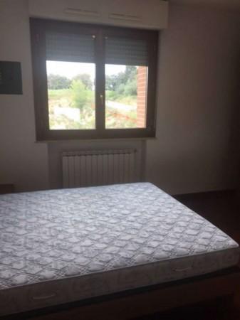 Appartamento in affitto a Perugia, Castel Del Piano, Arredato, 65 mq - Foto 5