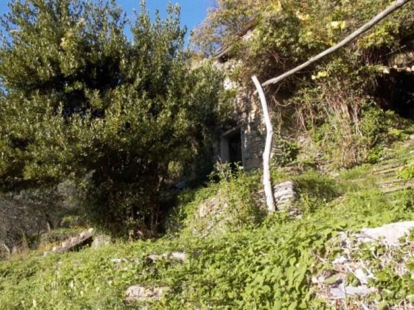 Rustico/Casale in vendita a Cogorno, Periferica, Con giardino, 400 mq - Foto 7