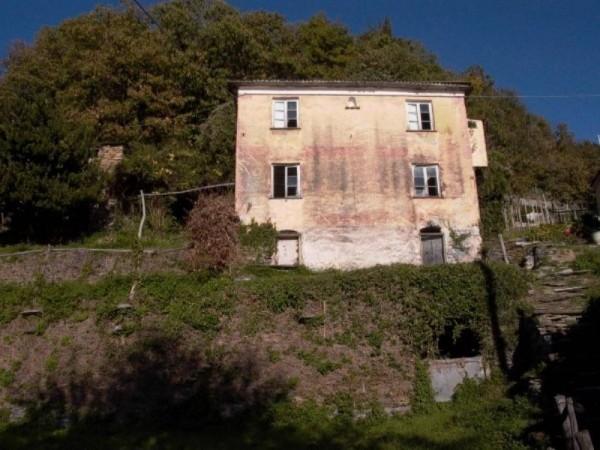 Rustico/Casale in vendita a Cogorno, Periferica, Con giardino, 400 mq - Foto 9