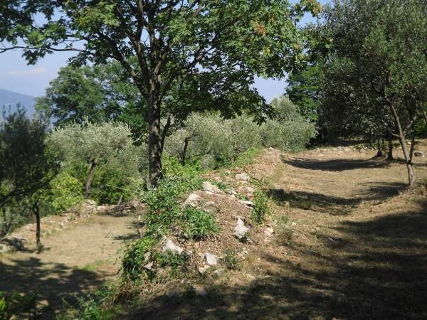 Casa indipendente in vendita a Portovenere, Con giardino, 130 mq - Foto 10