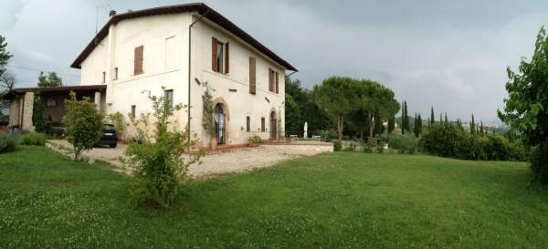 Rustico/Casale in vendita a Poggio Mirteto, San Luigi, Con giardino, 200 mq - Foto 18