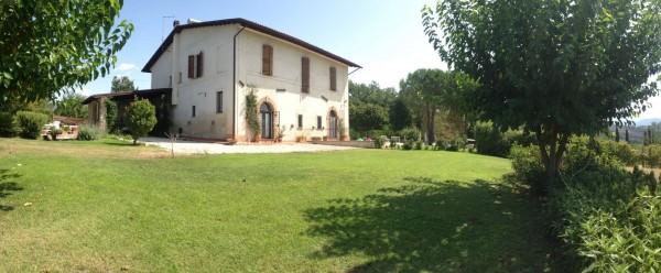 Rustico/Casale in vendita a Poggio Mirteto, San Luigi, Con giardino, 200 mq - Foto 3