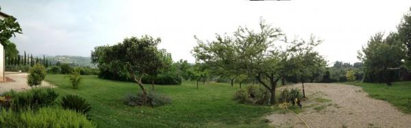 Rustico/Casale in vendita a Poggio Mirteto, San Luigi, Con giardino, 200 mq - Foto 6