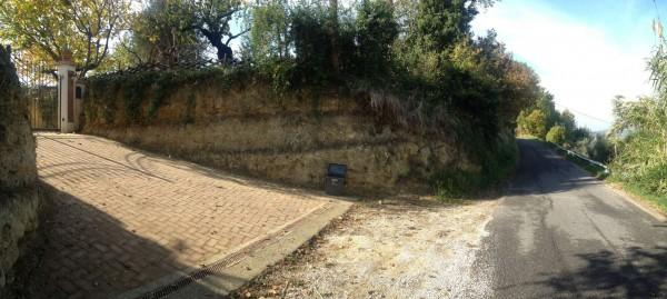 Rustico/Casale in vendita a Poggio Mirteto, San Luigi, Con giardino, 200 mq - Foto 5