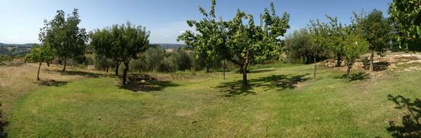 Rustico/Casale in vendita a Poggio Mirteto, San Luigi, Con giardino, 200 mq - Foto 2