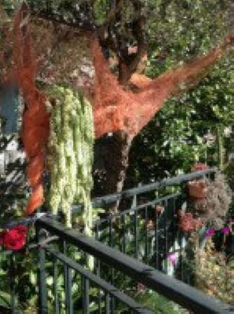 Appartamento in vendita a Avegno, Con giardino, 120 mq - Foto 24