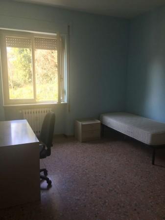 Appartamento in affitto a Perugia, Pellini, Arredato, 70 mq - Foto 15