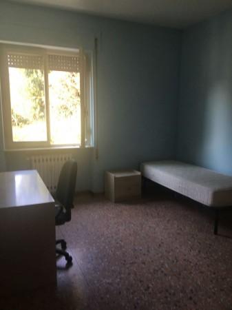 Appartamento in affitto a Perugia, Pellini, Arredato, 70 mq - Foto 16