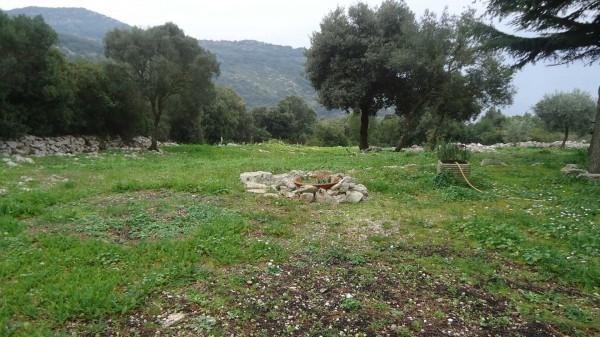 Locale Commerciale  in vendita a Terracina, Campo Soriano, Con giardino, 60 mq - Foto 3