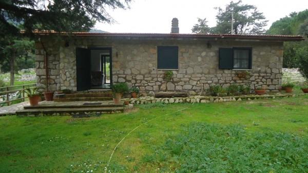 Locale Commerciale  in vendita a Terracina, Campo Soriano, Con giardino, 60 mq - Foto 1