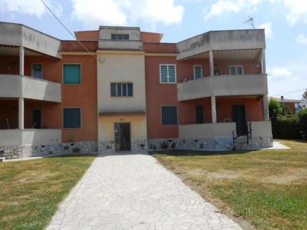 Appartamento in vendita a Anzio, Lido Delle Sirene, Con giardino, 100 mq - Foto 2