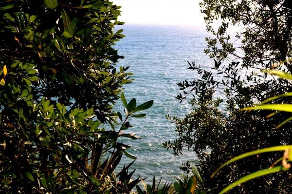 Appartamento in affitto a Recco, Sul Mare, Arredato, 40 mq - Foto 18