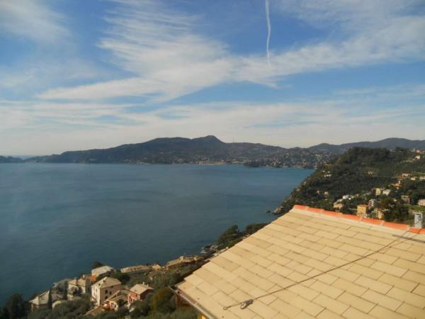 Appartamento in vendita a Zoagli, Sant'andrea Di Rovereto, Con giardino, 80 mq