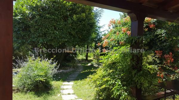 Villa in vendita a Trevi, Pietrarossa, Con giardino, 110 mq - Foto 15