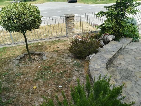 Casa indipendente in vendita a Belvedere Langhe, Centro, Con giardino, 260 mq - Foto 16