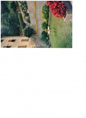 Casa indipendente in vendita a Tribogna, Gattorna, Arredato, con giardino, 250 mq - Foto 12