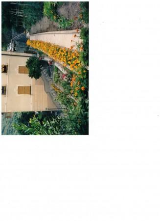 Casa indipendente in vendita a Tribogna, Gattorna, Arredato, con giardino, 250 mq - Foto 13