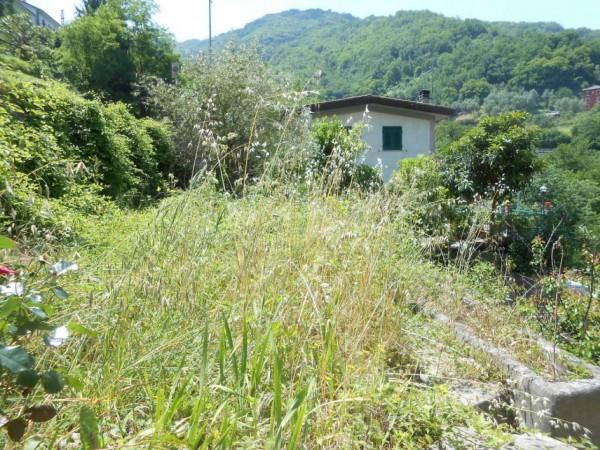 Casa indipendente in vendita a Tribogna, Gattorna, Arredato, con giardino, 250 mq - Foto 25