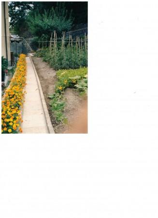 Casa indipendente in vendita a Tribogna, Gattorna, Arredato, con giardino, 250 mq - Foto 2