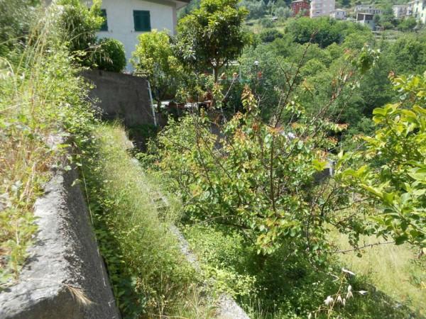 Casa indipendente in vendita a Tribogna, Gattorna, Arredato, con giardino, 250 mq - Foto 24