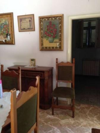 Casa indipendente in vendita a Ameglia, Con giardino, 80 mq - Foto 11