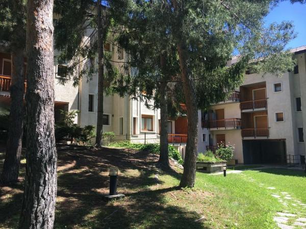 Appartamento in vendita a Bardonecchia, Palazzo Delle Feste, Con giardino, 60 mq - Foto 4