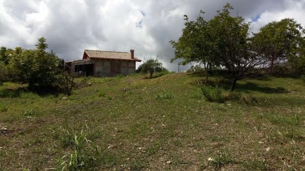 Villa in vendita a Castroreale, Simiglianò, Con giardino, 90 mq - Foto 16