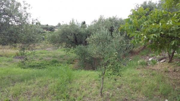 Villa in vendita a Castroreale, Simiglianò, Con giardino, 90 mq - Foto 15