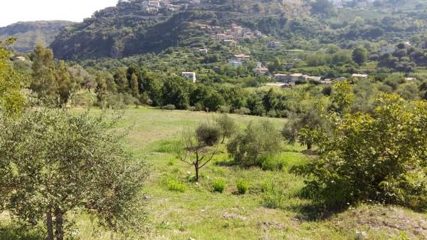 Villa in vendita a Castroreale, Simiglianò, Con giardino, 90 mq - Foto 17