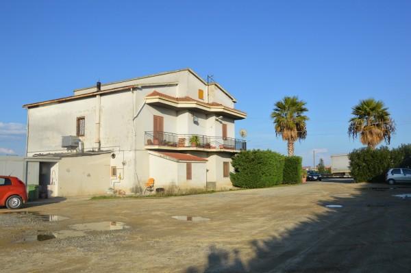 Locale Commerciale  in vendita a Corigliano Calabro, Ss 106, Con giardino, 500 mq - Foto 33