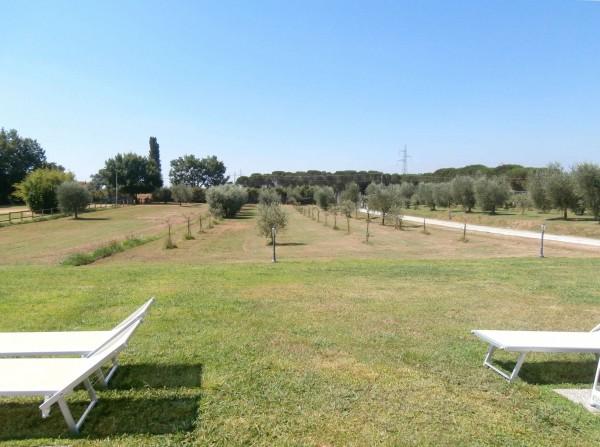 Rustico/Casale in vendita a Altopascio, 450 mq - Foto 8