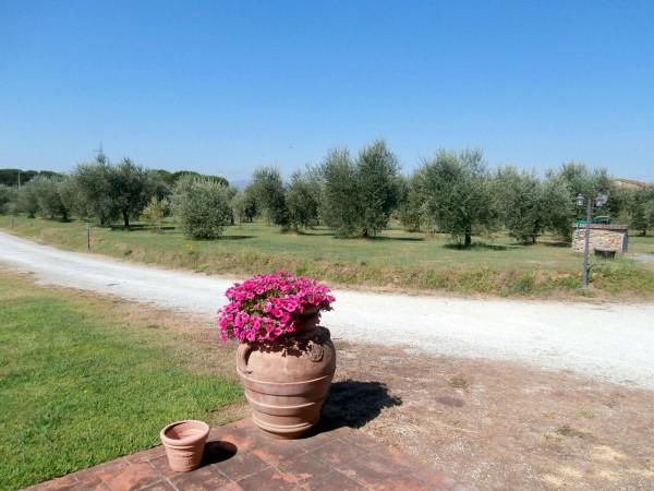 Rustico/Casale in vendita a Altopascio, 450 mq - Foto 7