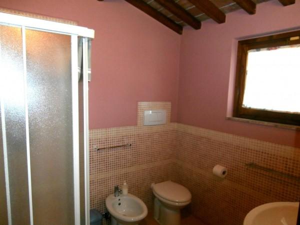 Rustico/Casale in vendita a Altopascio, 450 mq - Foto 12