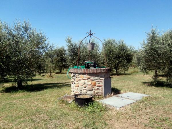 Rustico/Casale in vendita a Altopascio, 450 mq - Foto 10
